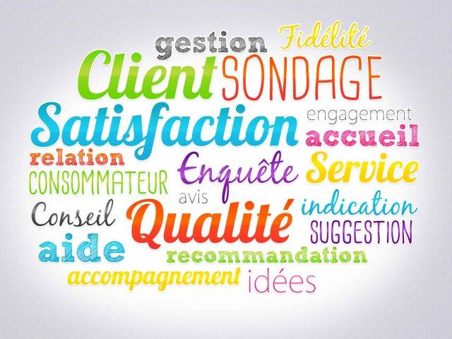 télésecrétariat, Satisfaction clients et enquêtes